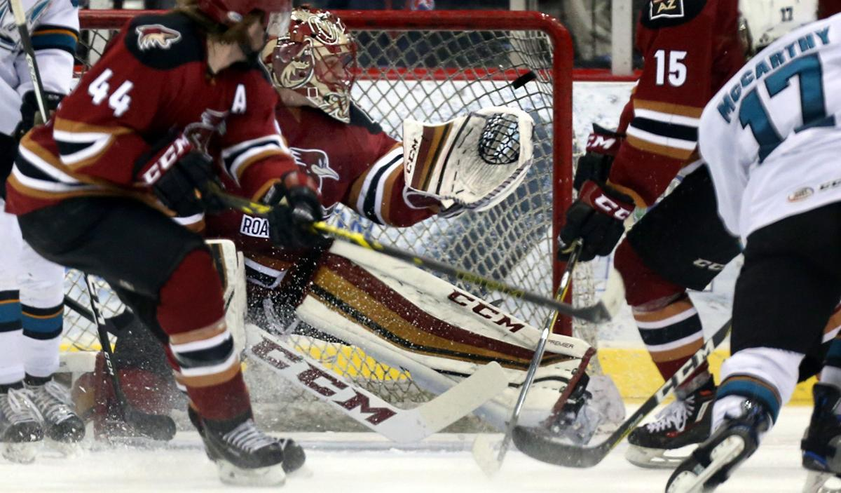 tucson roadrunners bonded over tragedy triumph in inaugural