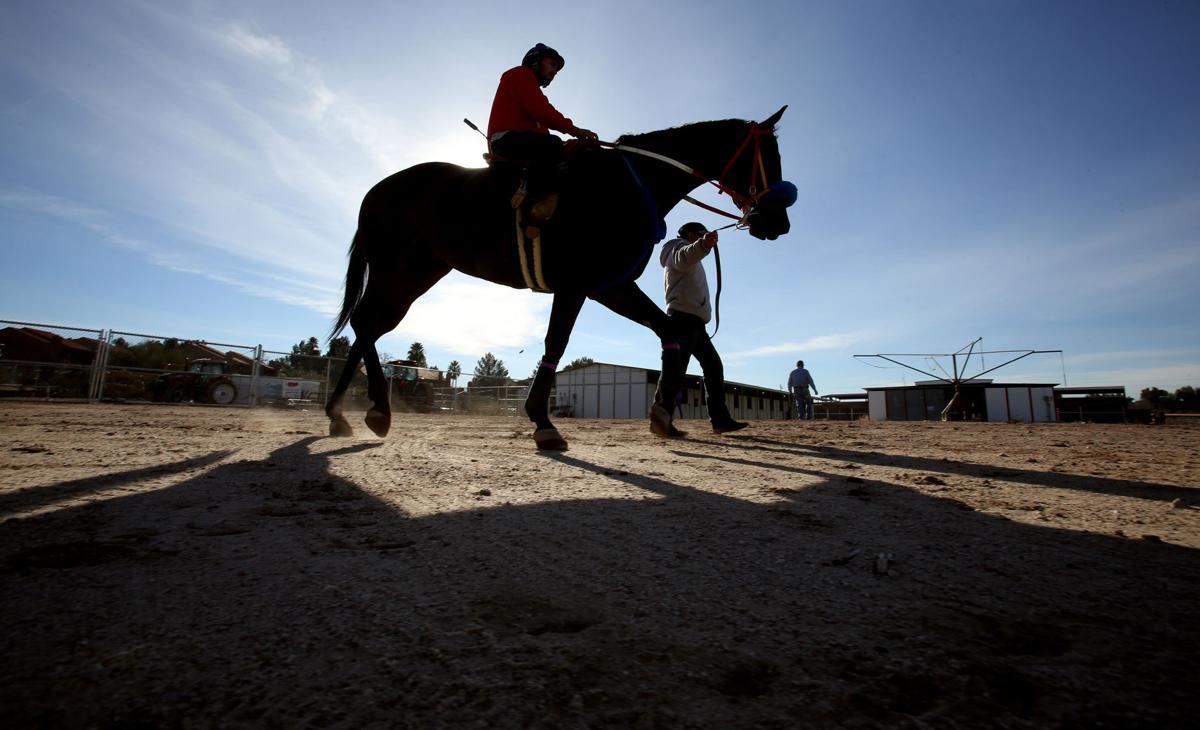 Horse racing returns to Rillito Park