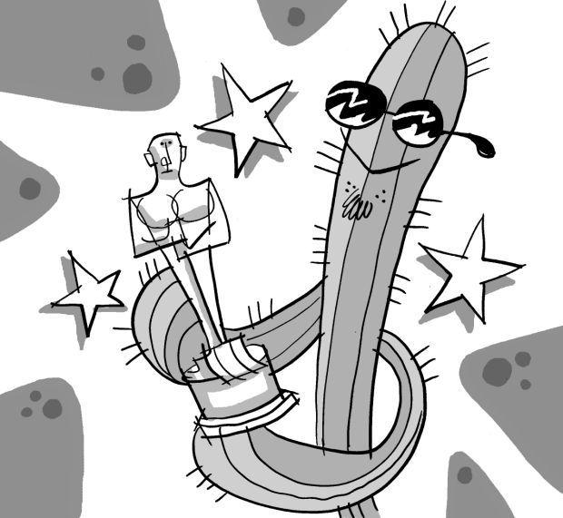 Fitz blog Art:Oscars