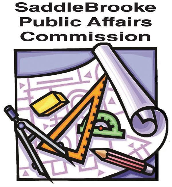 SBN-Logo-SB-PublicAffairs.jpg