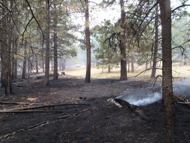 Deer Head Fire