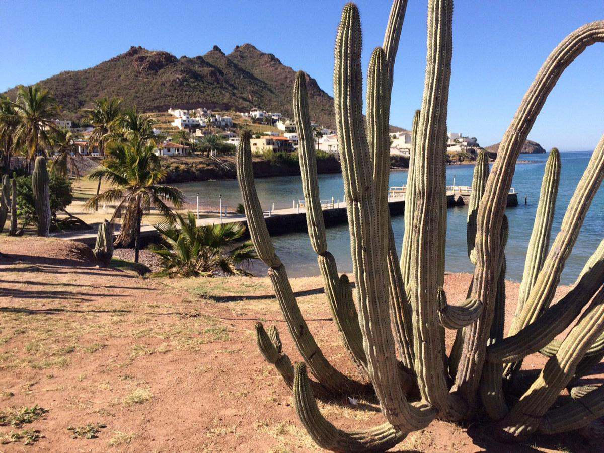 Tucson To Get Direct Flights To Guaymas Local News