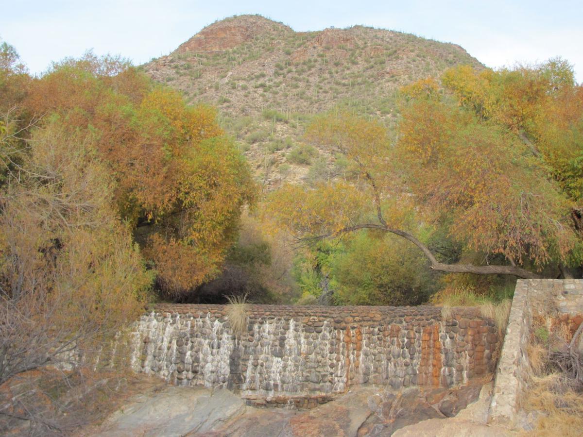 Sabino Dam dry
