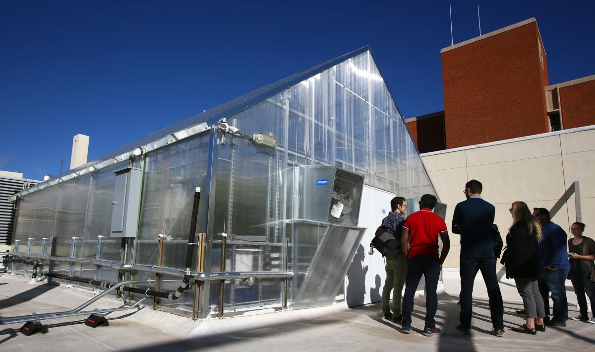 Rooftop greenhouse at UA