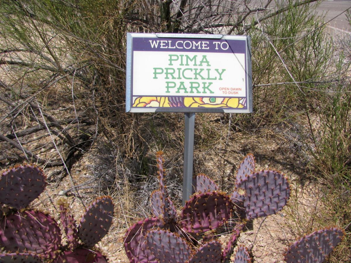 Pima Prickly Park