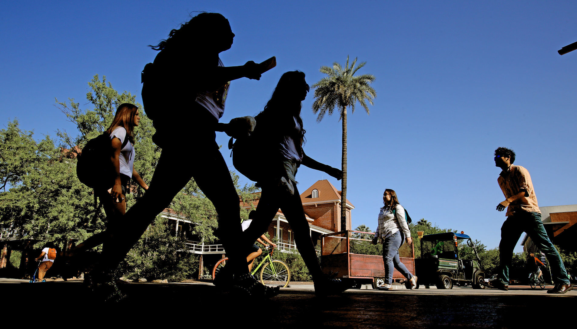 free letters of resignation%0A University of Arizona