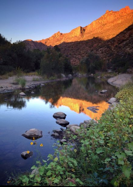 Evening Reflection in Sabino Canyon