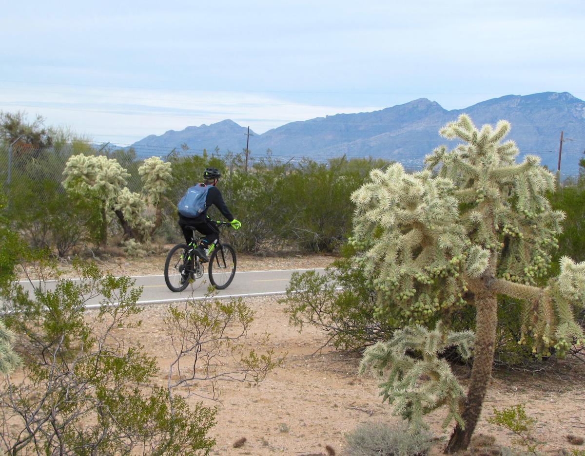 Cyclist on greenway