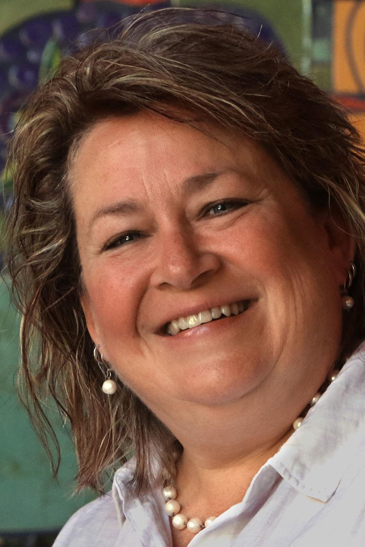 Kelly Fryer 2018 Elections – Arizona Governor