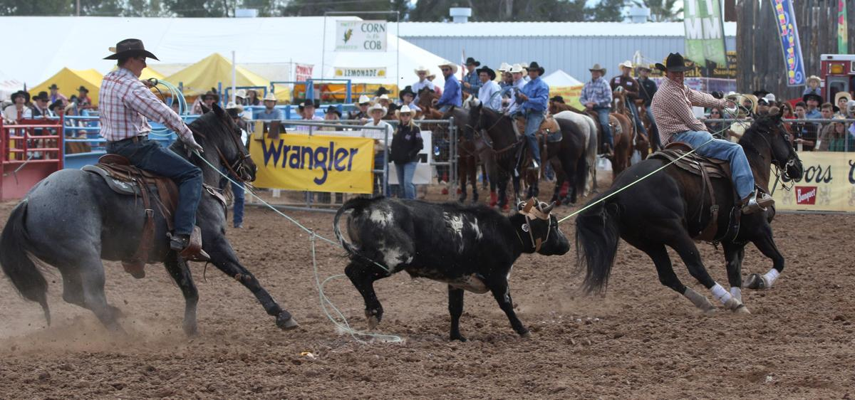 Tucson Rodeo Finals