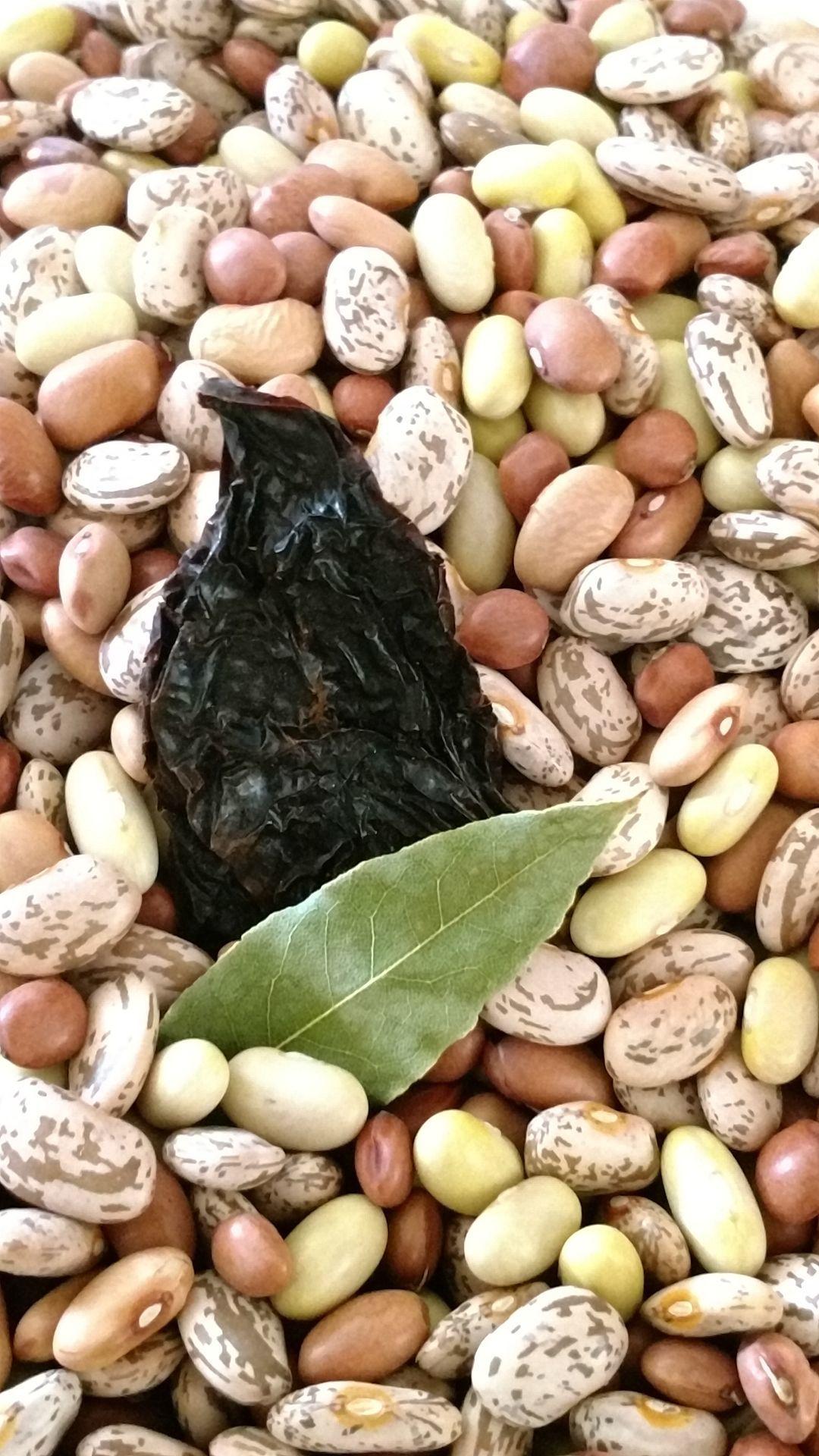 Ancient heirloom beans taste of Arizona's land, heritage