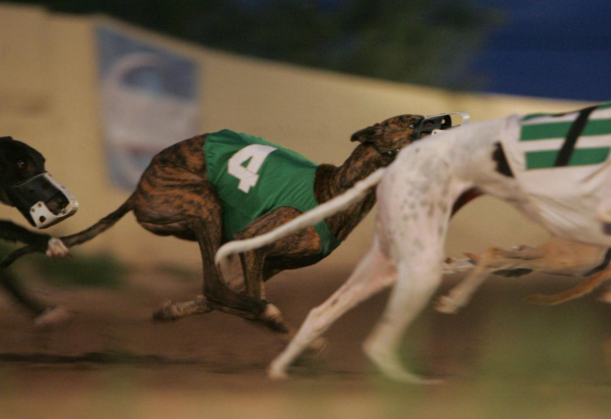 Tucson Greyhound Park