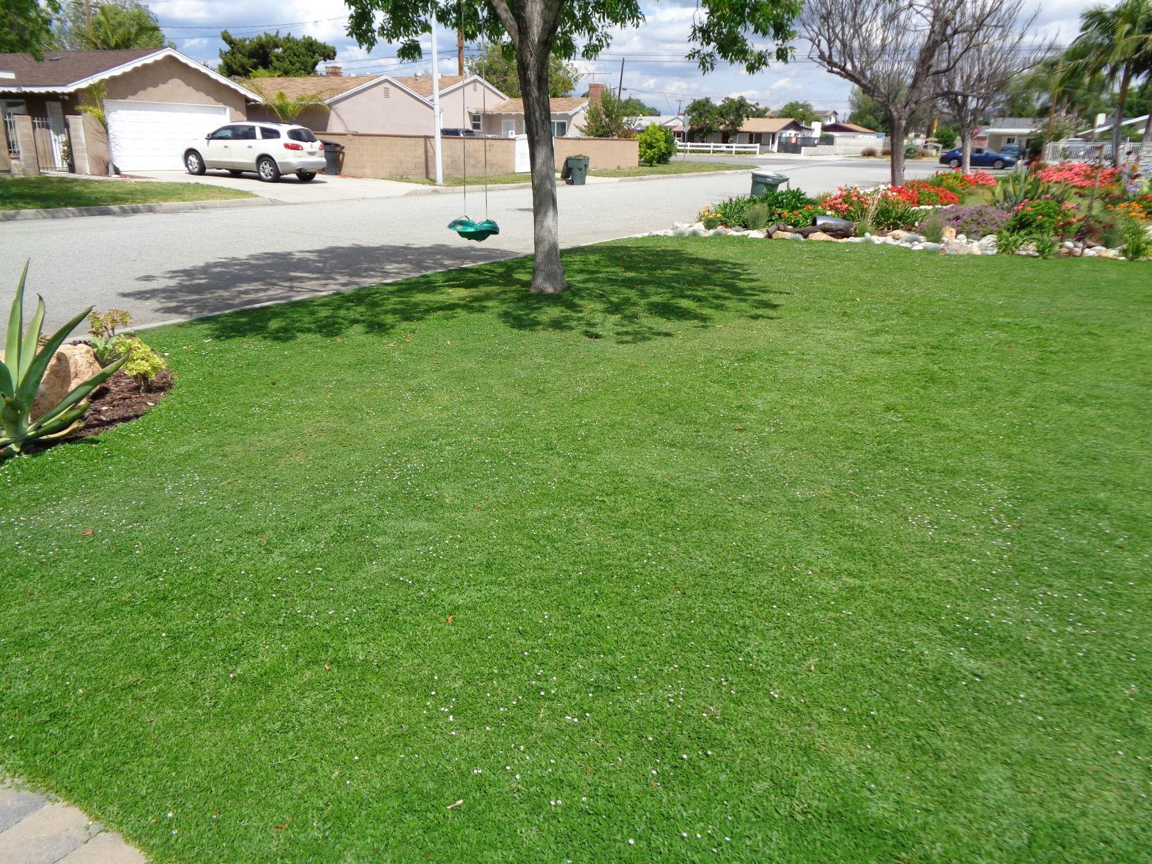 These Gr Lawn Options Work Well In
