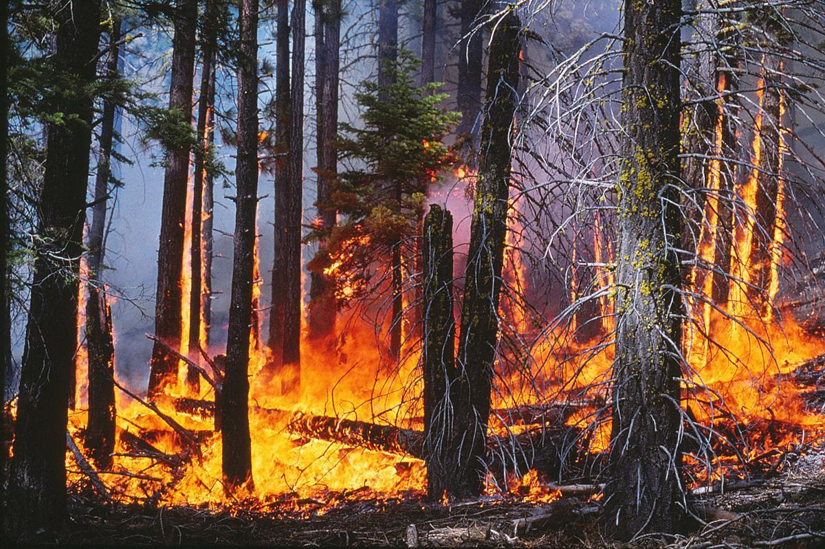 Fire in Lake Tahoe Basin