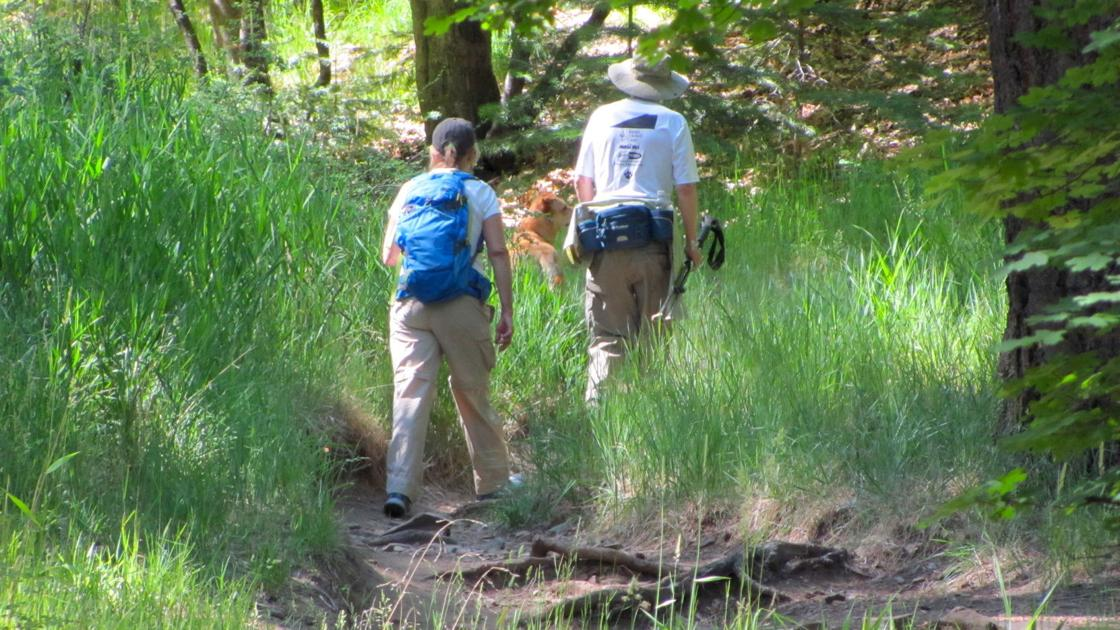 9 hiking tips to help keep you safe during Southern Arizona summers