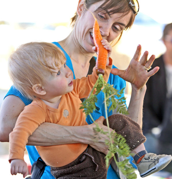 Family Fun on the Farm Fridays gives a taste of milking, picking