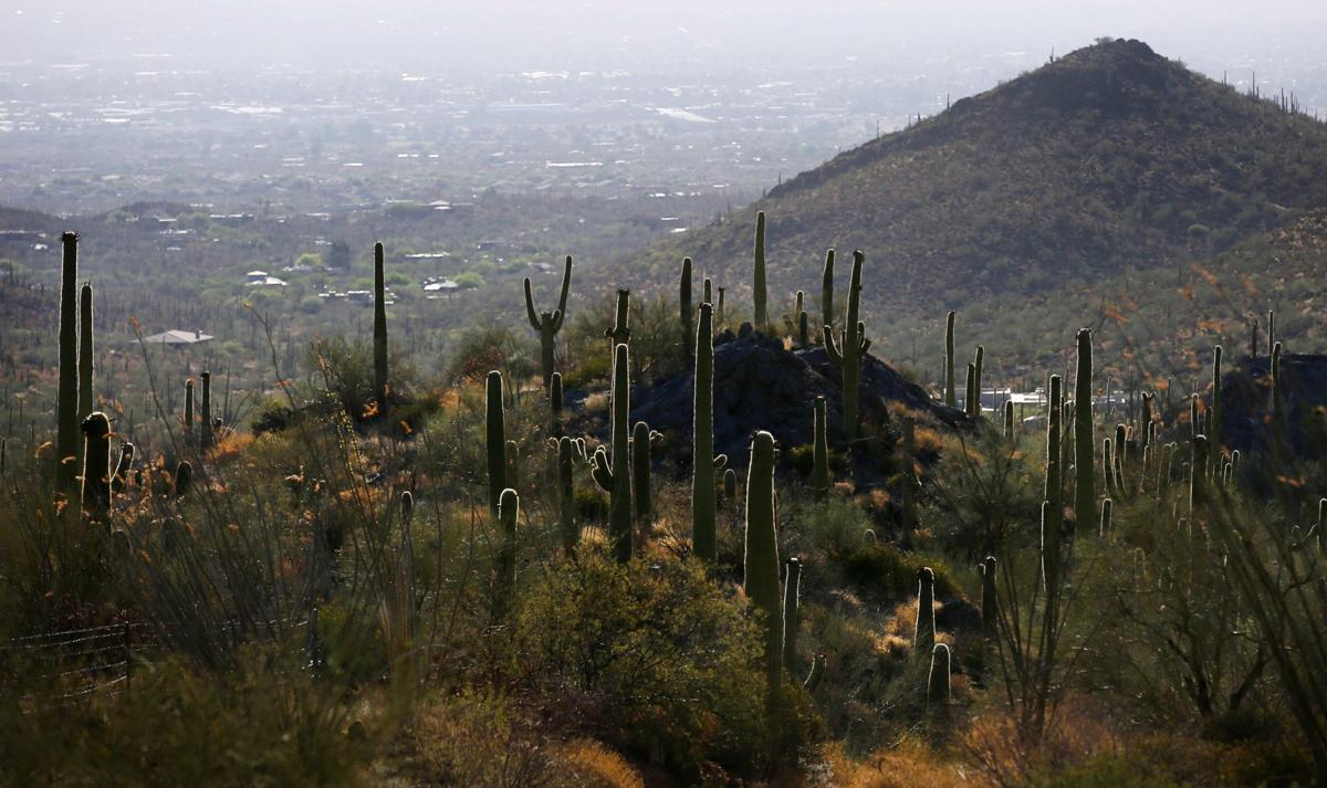 Saguaro National Park expansion