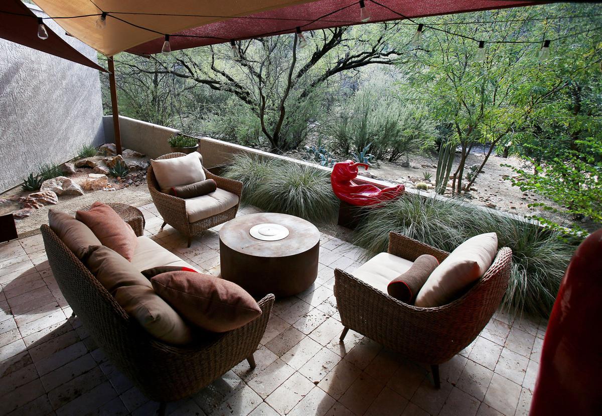 Award Winning Garden Redesign Makes Makes For Happier Tortoise