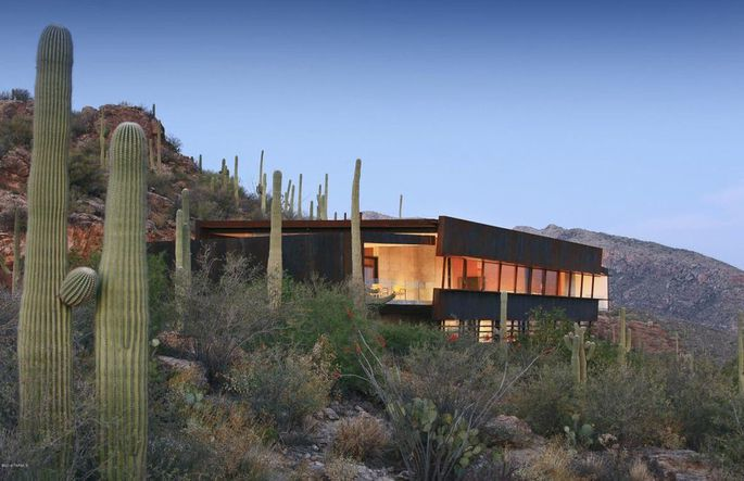 Vincent Gallo buys house in Tucson