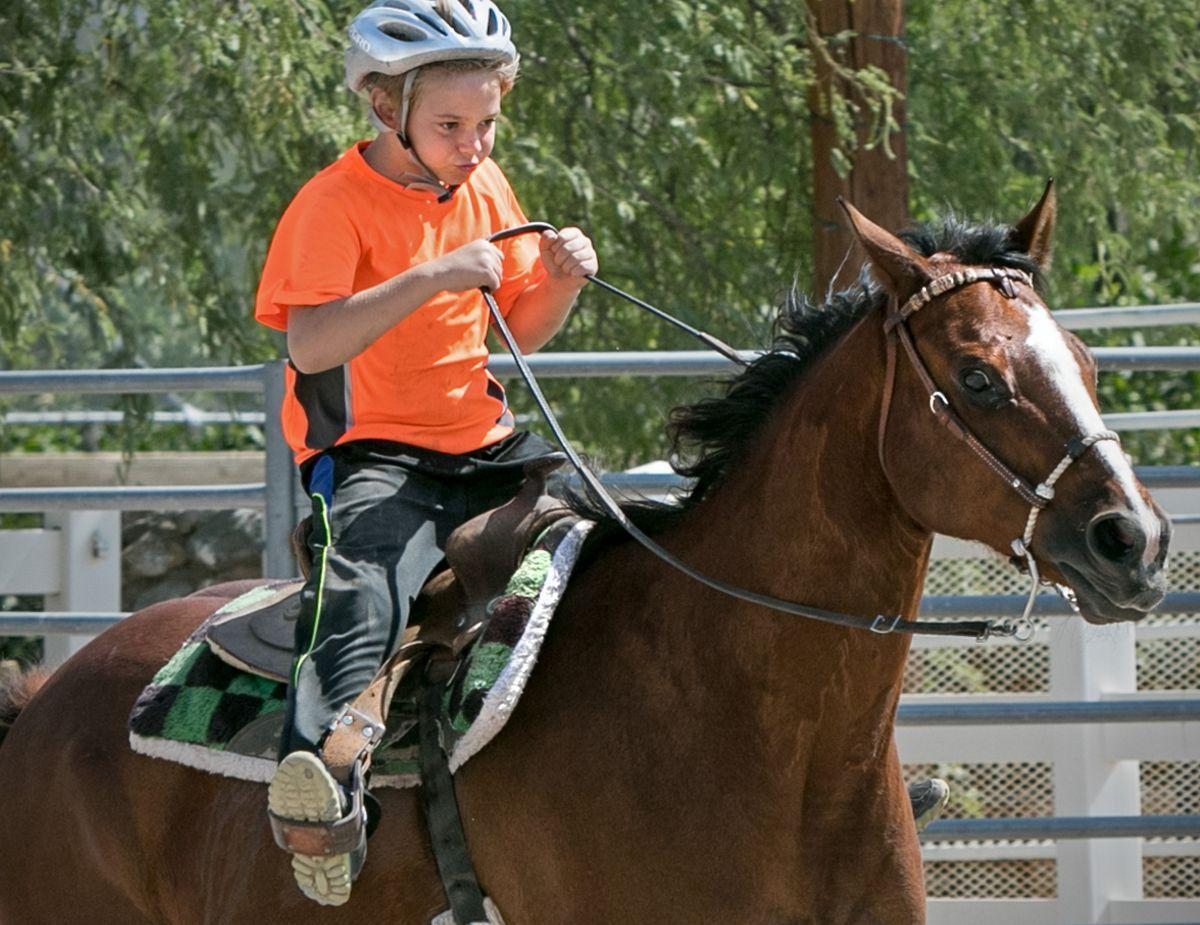 Therapeutic Ranch for Animals and Kids