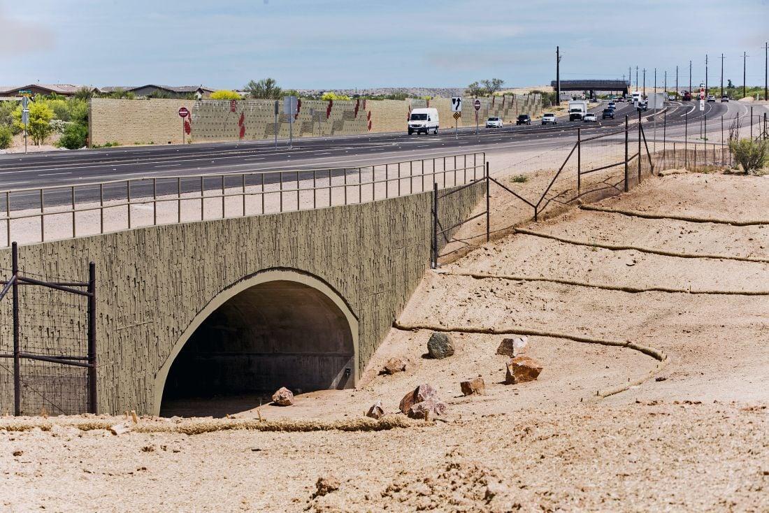 Oracle Road wildlife crossings
