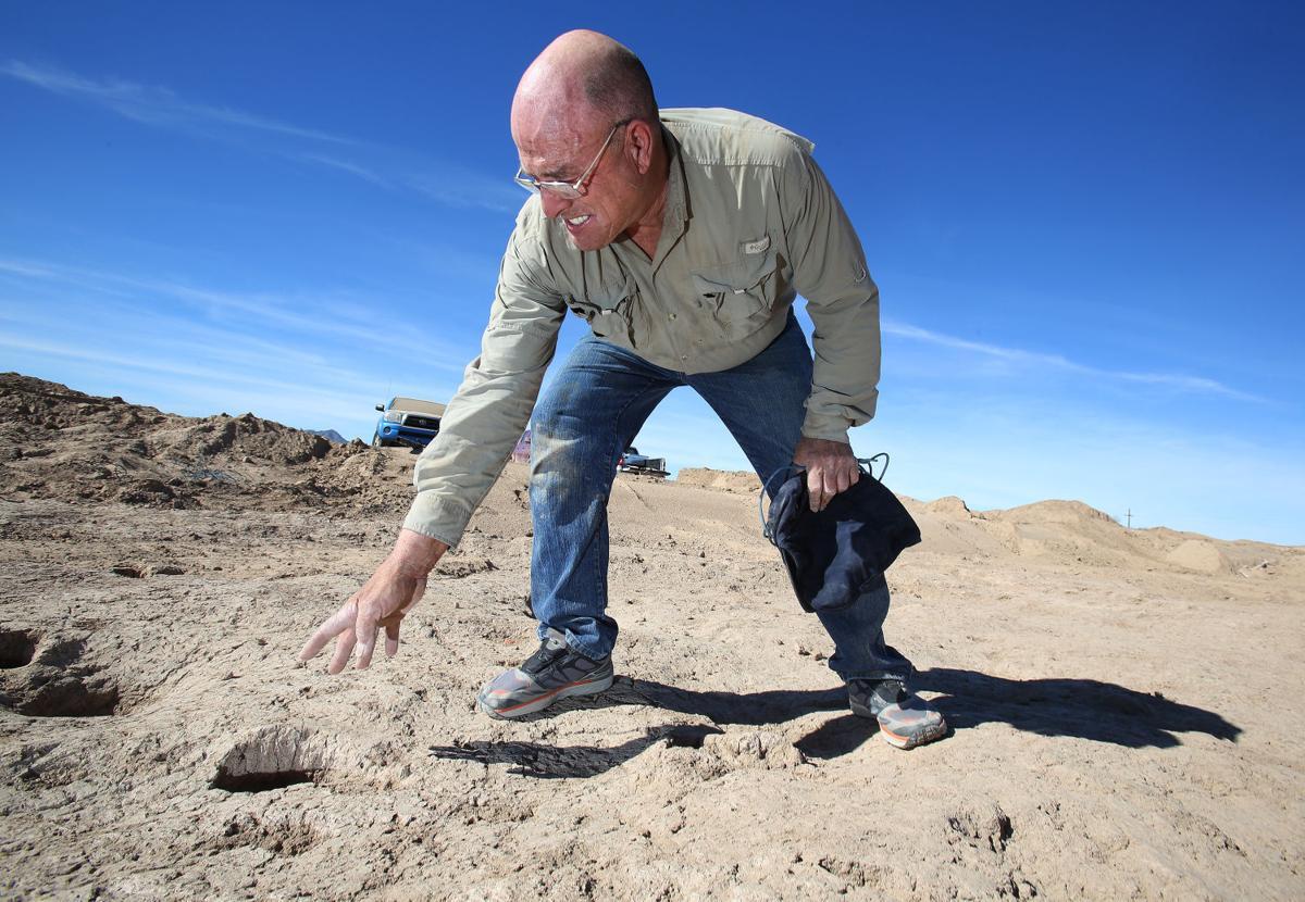 Prehistoric human footprints found
