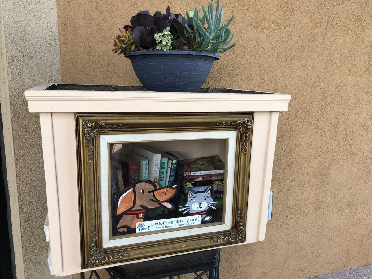 Little Free Library Dove Mountain