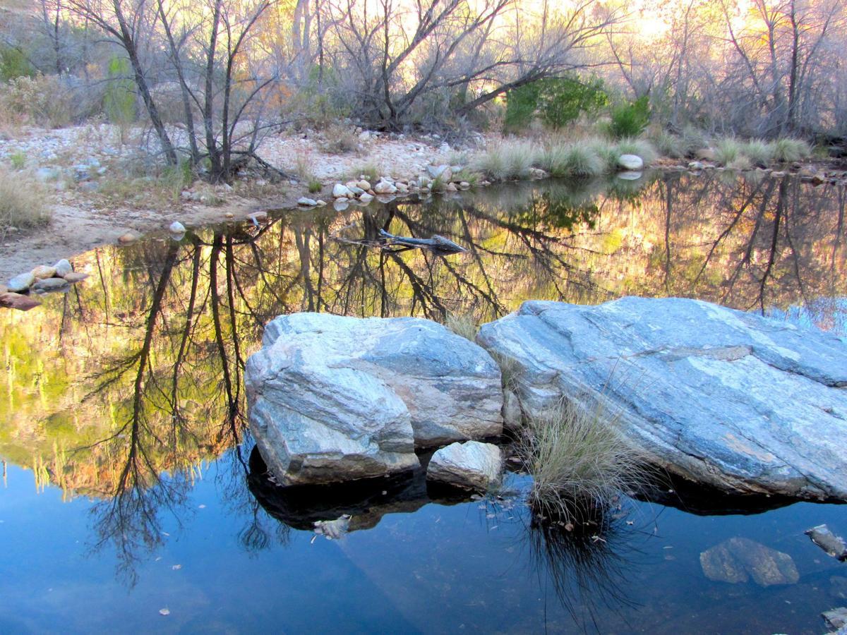 Pool along creek