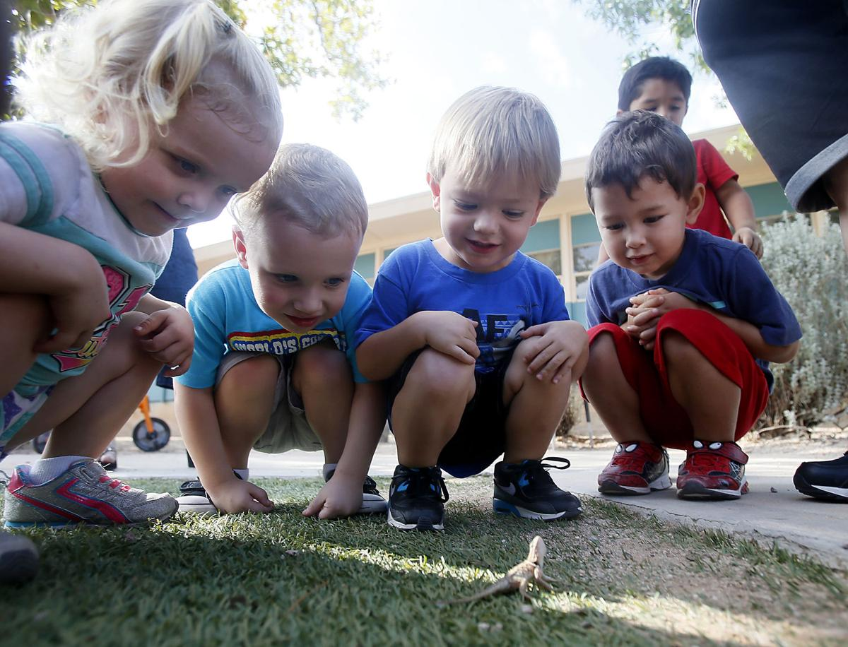 Victoria Steele: Tucson's children deserve a high-quality early education
