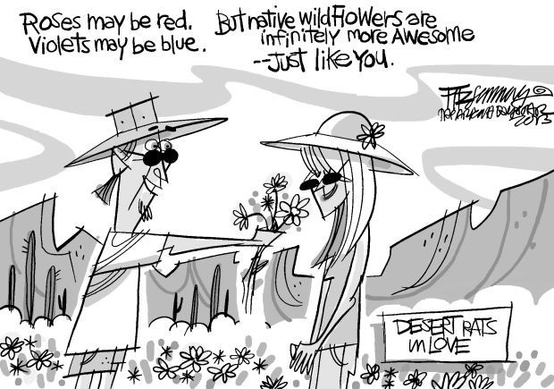 Fitz's last laugh: Desert rats in love