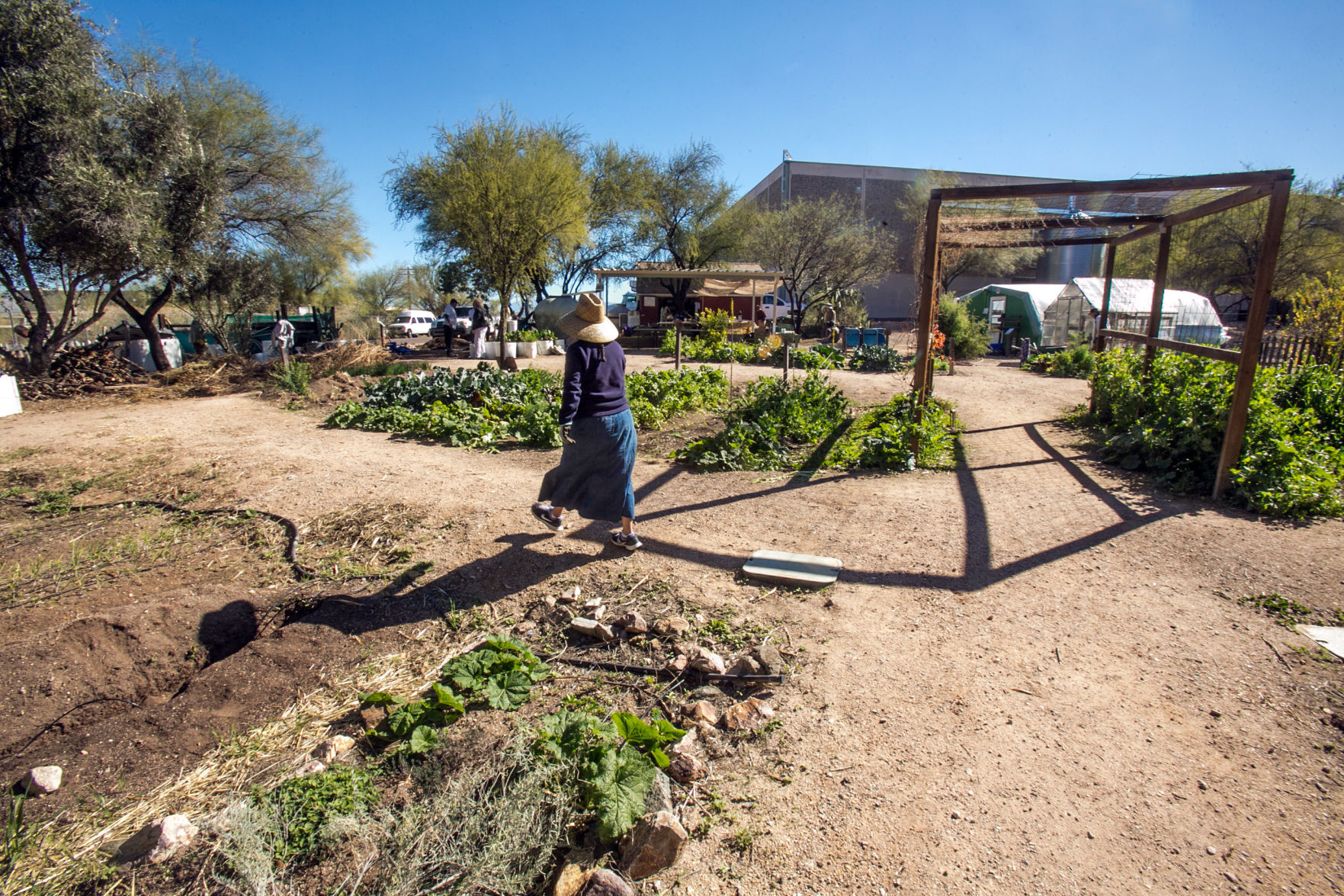 Merveilleux Community Food Garden