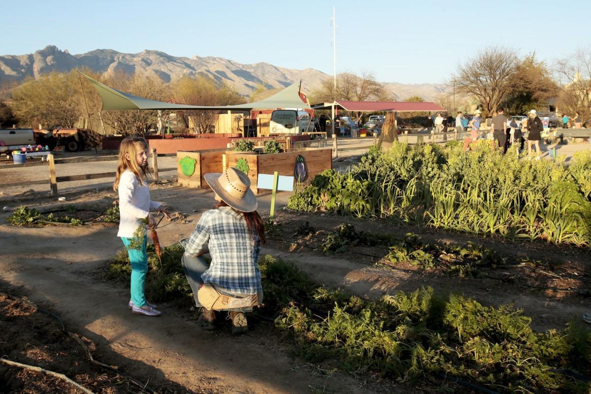 Tucson Village Farm
