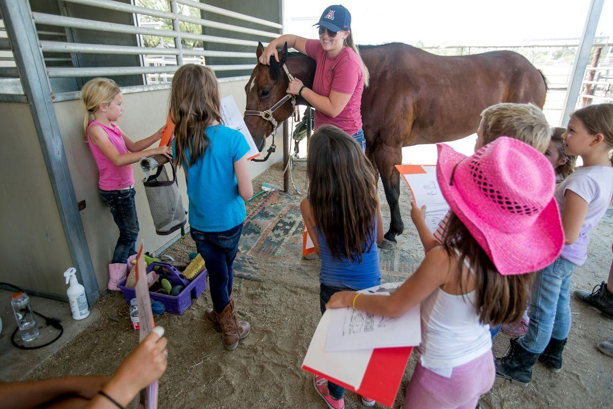 Therapeutic Ranch for Animals and Kids (copy)