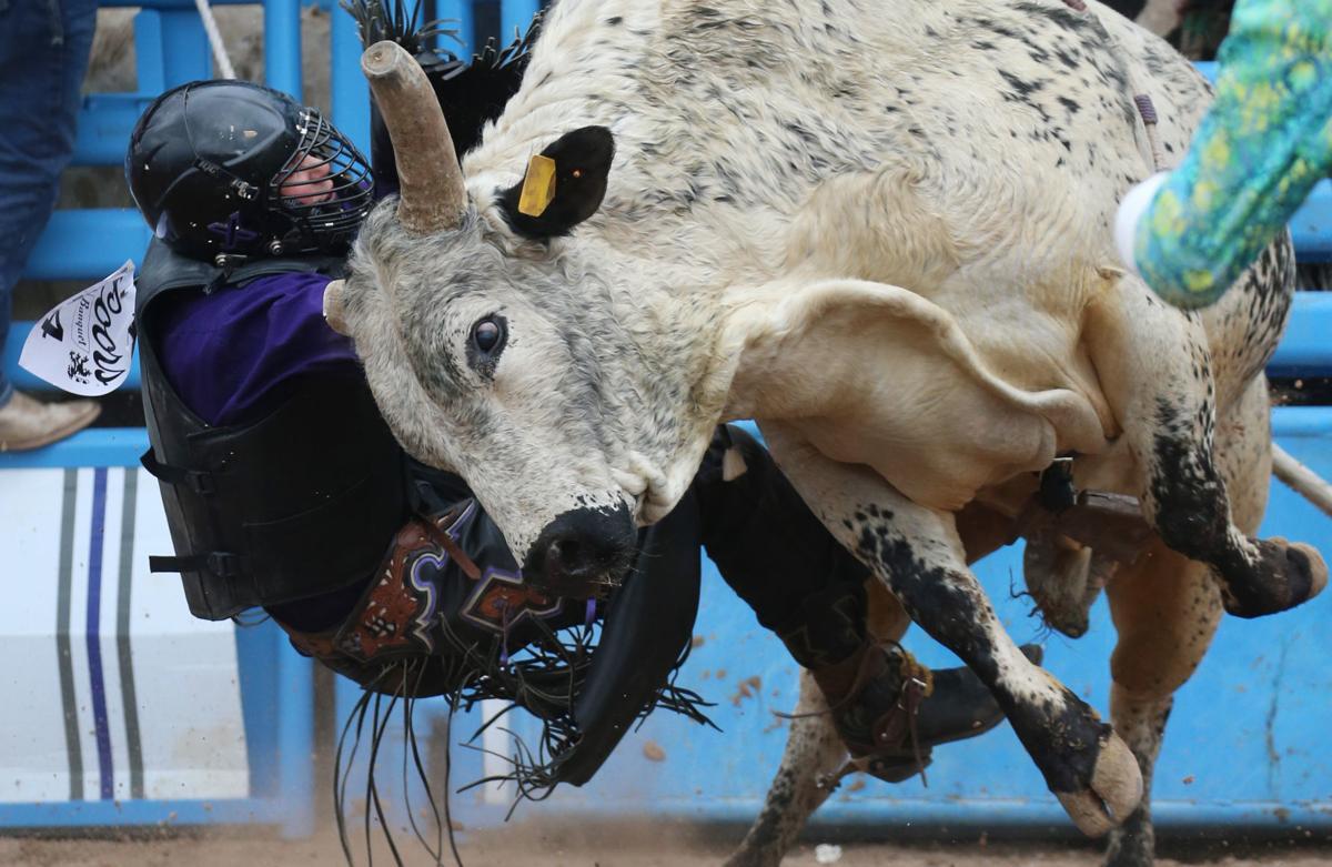 022219-spt-rodeo