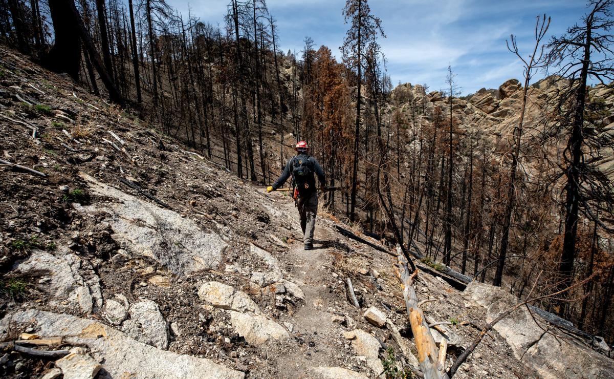 Green Mountain Trail, Bighorn Fire