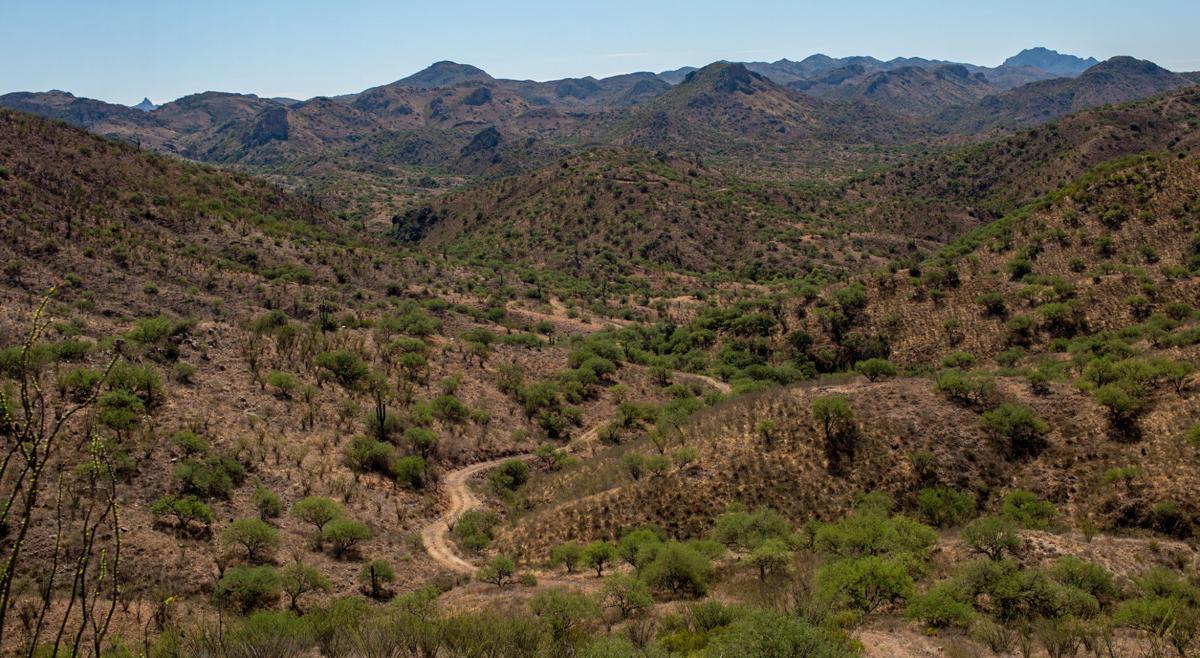 U.S. - Mexico border, Sasabe, Arivaca