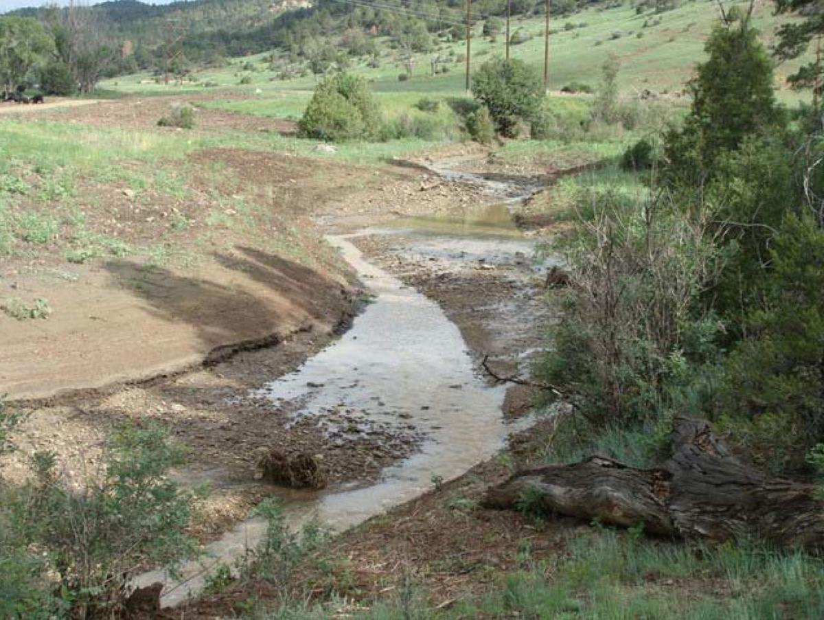 Rosemont Copper Project revised habitat mitigation and monitoring plan