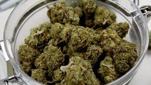 Court overturns law prohibiting medical marijuana on Arizona college, university campuses