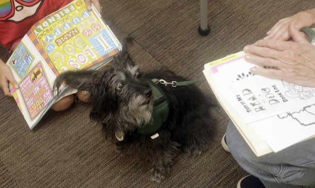 Read to a Dog program gives literacy a boost