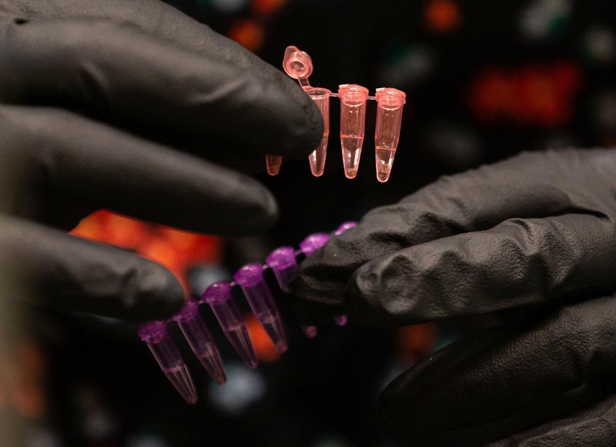 University of Arizona Bioscience