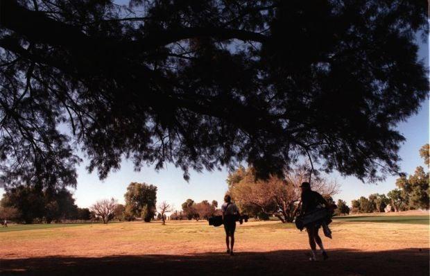 15 firms rush in to run city golf