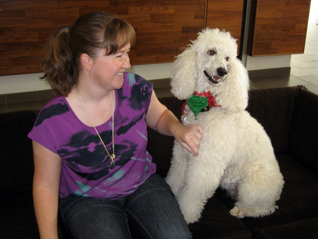 Therapy dog takes edge off law exams