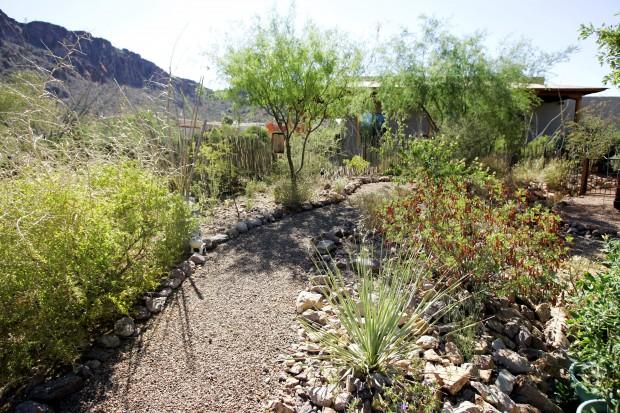 xeriscaped wonderland   Tucson Gardens   tucson.com