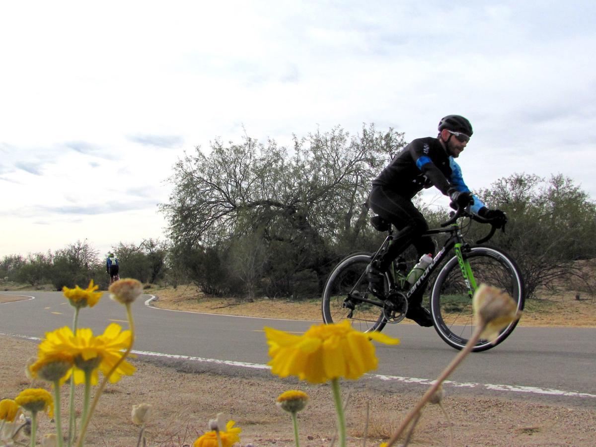 Cyclist (copy)