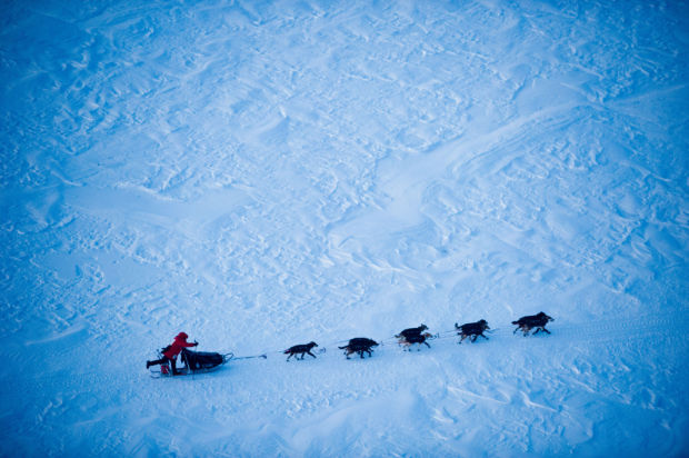 A historic look at the Iditarod