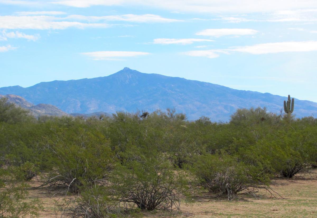 Rincon Peak view