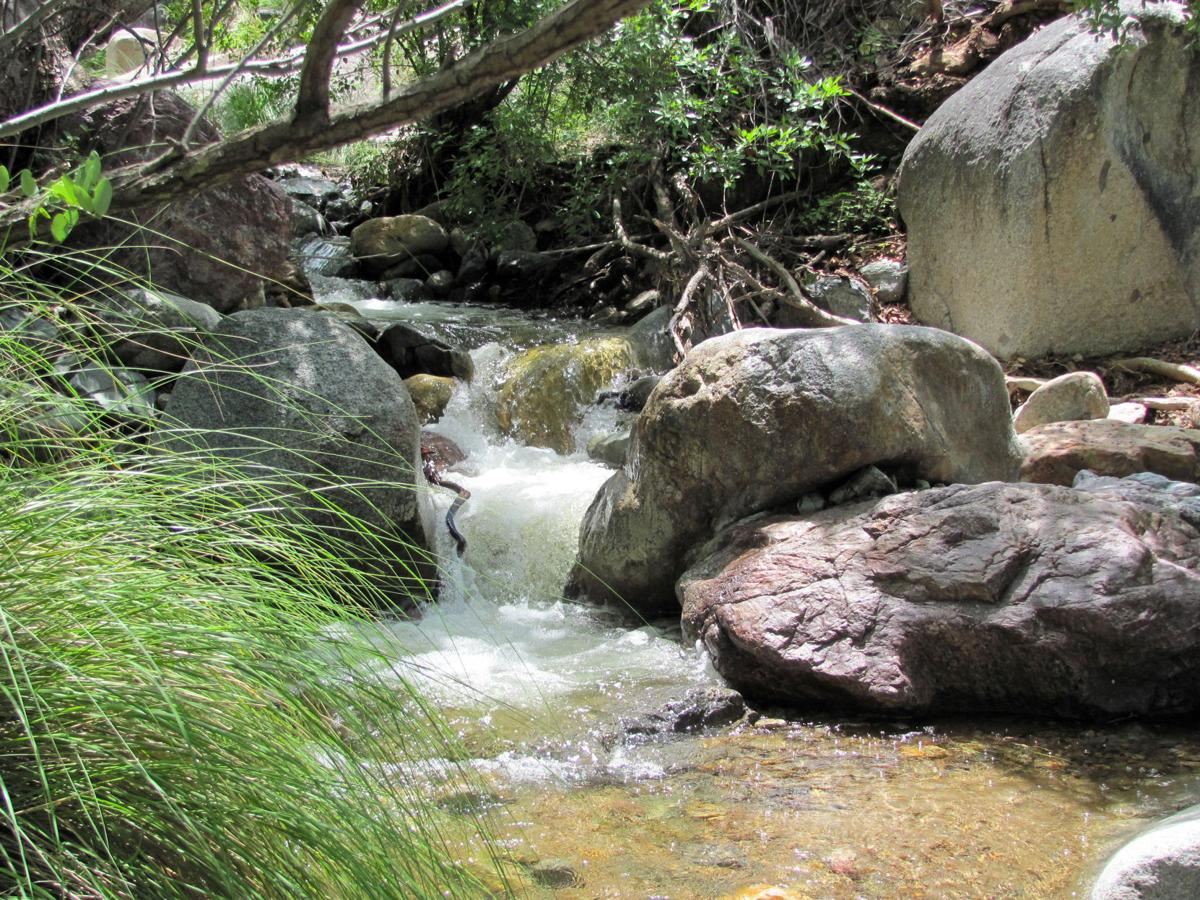Gushing creek