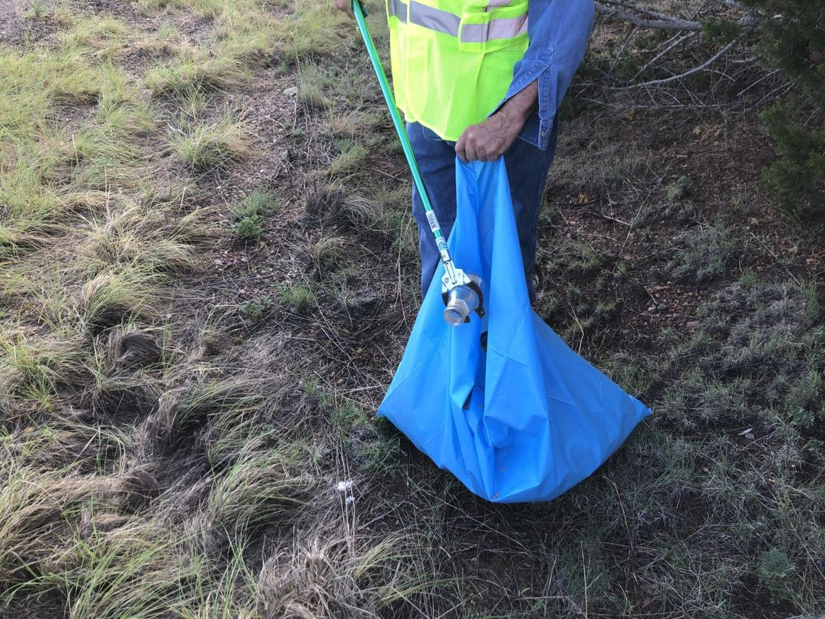 Volunteers fill bags with litter