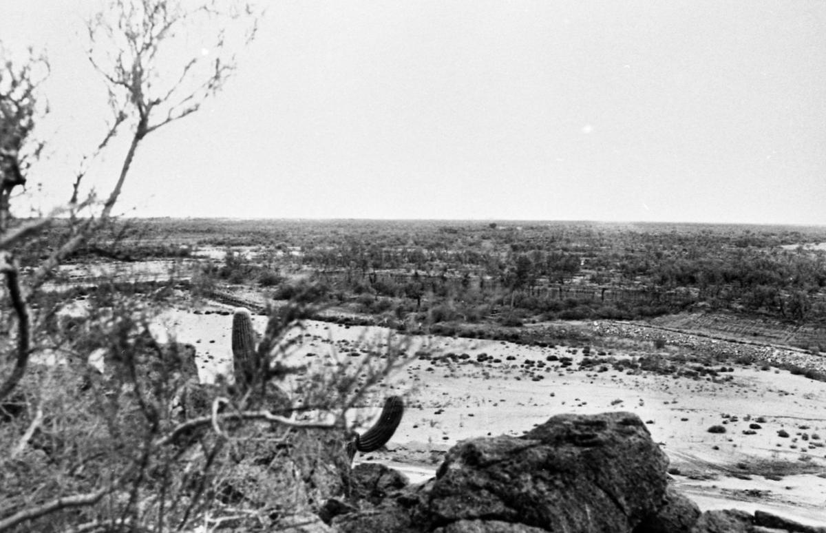 Santa Cruz River, 1978