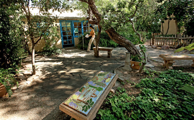 Tucson Botanical Gardens Celebrates 40 Years As Midtown